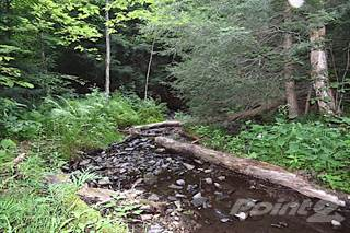 Land for sale in 00 Apache Springs Rd, Boylston, NY, 13083
