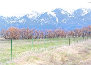 Farm And Agriculture for sale in Nhn Logan Road, Charlo, MT, 59824