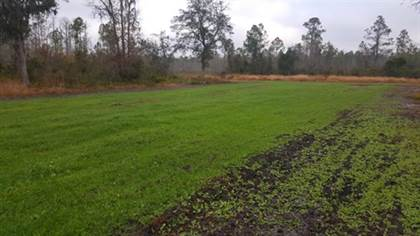 Lots And Land for sale in 3392 SW Bee Tree, Madison, FL, 32340
