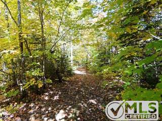 Land for sale in Rue des Trilliums, Gore, Quebec, J0V1K0