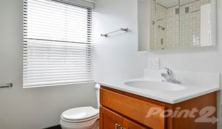 Apartment for rent in 1640 N Damen Apartments - 2 Bedroom - 1 Bath, Chicago, IL, 60647