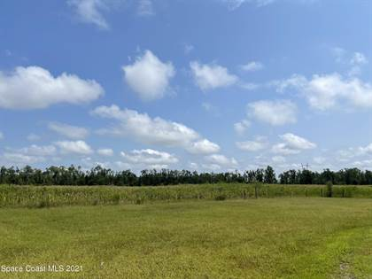 Farm And Agriculture for sale in -- Highway 71 N, Altha, FL, 32421