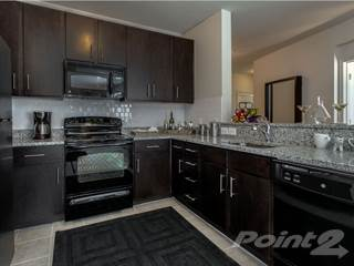 Apartment for rent in Crystal City Lofts - 1 BR, 1 Ba, Arlington, VA, 22202