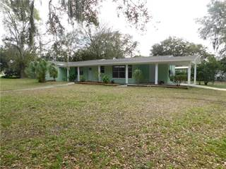 Single Family for sale in 1113 N PALM DRIVE, Plant City, FL, 33563