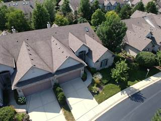 Townhouse for sale in 23 Laughry Lane, Palos Park, IL, 60464