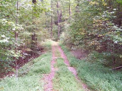 Lots And Land for sale in 0 Black Bear Den 13, Clayton, GA, 30525