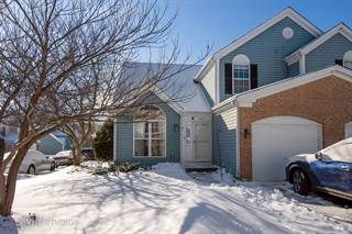 Townhouse for sale in 847 S. Constitution Avenue, Island Lake, IL, 60042