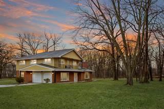Single Family for sale in 22941 Shagbark Lane, Steger, IL, 60475
