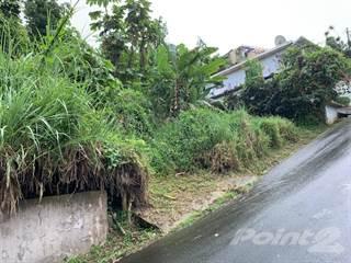 Land for sale in TERRENO BARRIO DAJAOS- BAYAMON (REPO), Bayamon, PR, 00956