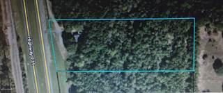 Land for sale in 952 Highway 231 Highway, Alford, FL, 32420