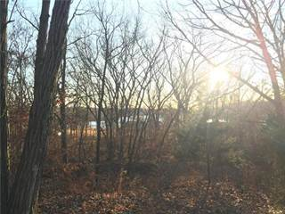 Land for sale in Beach Front Drive, Excelsior Springs, MO, 64024