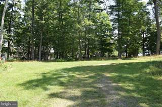 Land for sale in 48 TALL PINE DRIVE, Sugar Grove, WV, 26815