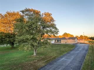 Single Family for sale in 90 Golf Course Road, Eldorado, IL, 62930