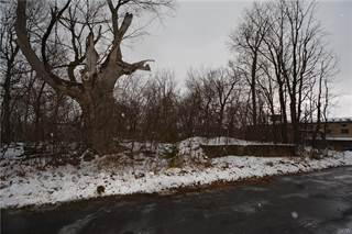 Land for sale in 317 N. Meadow Street, Watertown, NY, 13601