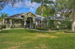 Single Family for sale in 1508 CAMPHOR COVE DRIVE, Lutz, FL, 33549