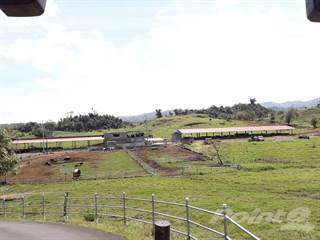 Residential Property for sale in Bo. Torrecillas, Morovis PR, Morovis, PR, 00687
