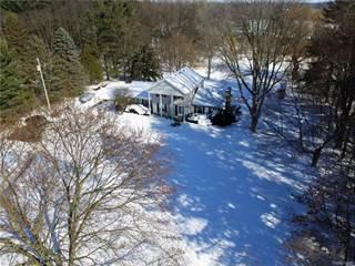 Single Family for sale in 9198 Gould Road, Deerfield, MI, 48451