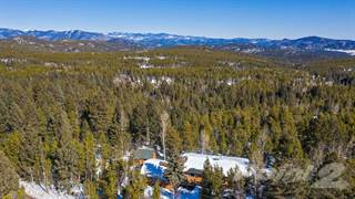Single Family for sale in 9690 S. Warhawk Road , Conifer, CO, 80433
