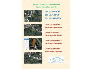 Residential Property for sale in Urb. Las Gaviotas, Fajardo PR, Fajardo, PR, 00738