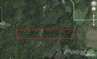 Avon Park Florida Map.Land For Sale Avon Park Sebring Fl Vacant Lots For Sale In Avon