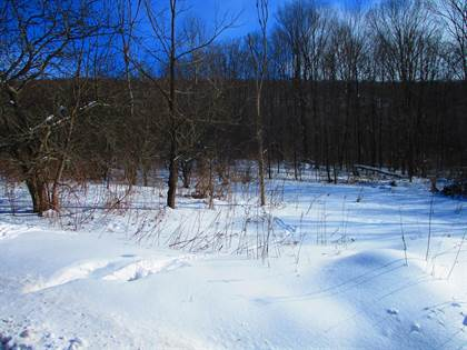 Lots And Land for sale in 0 Ivan Mereness Road, Decatur, NY, 12197