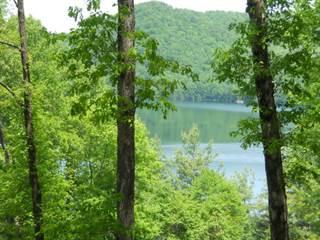 Residential Property for sale in 16131 Wayah Road, Nantahala Lake, NC, 28781