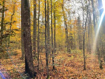 Lots And Land for sale in 6083 JOHNSON RD, Crandon, WI, 54520