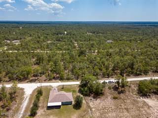 Land for sale in 0 Scarlet Ibis Avenue, Annutteliga Hammock, FL, 34614