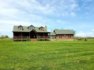 Single Family for sale in 127 Jordan Road, Bruceton Mills, WV, 26525