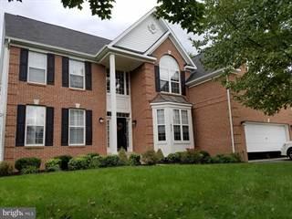 Single Family for rent in 823 SADDLEBACK PLACE NE, Leesburg, VA, 20176