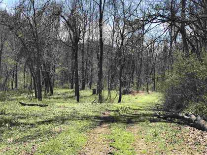 Farm And Agriculture for sale in Tribble Road, Leon, WV, 25213
