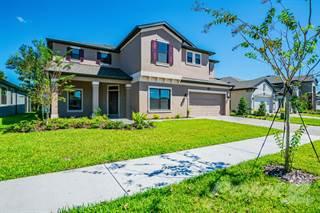 Single Family for sale in 1794 Cherry Walk Road, Jay B. Starkey, FL, 33558
