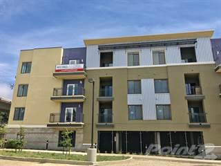 Apartment for rent in Metro 510 - 1A - ONE BED, ONE BATH + DEN, El Cerrito, CA, 94530