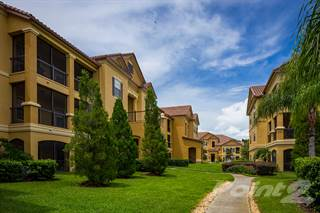 Apartment for rent in Delano at Cypress Creek Apartments - A3 (Alexandria), Wesley Chapel, FL, 33544