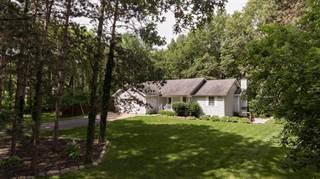 Single Family for sale in 300 Hermitage Farm Ln, Stockbridge, MI, 49285