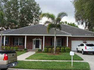 Single Family for rent in 3970 TALAH DRIVE, Palm Harbor, FL, 34684
