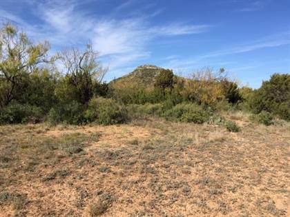Lots And Land for sale in 0001 School Rd, Tennyson, TX, 76933