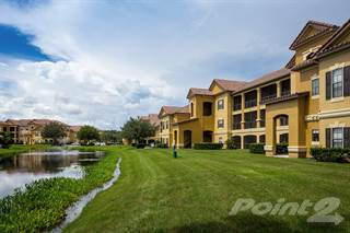 Apartment for rent in Delano at Cypress Creek, Wesley Chapel, FL, 33544