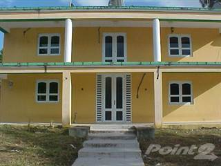 Residential Property for sale in Barrio Nuevo (Repo), Guadiana, PR, 00719