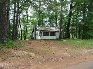 Single Family for sale in 4746 Swihardt Road, Brethren, MI, 49619