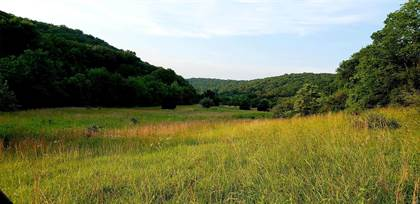 Farm And Agriculture for sale in 6535 St Johns Lane, House Springs, MO, 63051