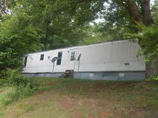 Residential Property for sale in 225 Lautner Road, Bulls Gap, TN, 37711