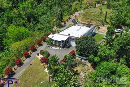 Residential Property for sale in Bo Hato Viejo, Ciales Puerto Rico., Greater Linn, TX, 78563