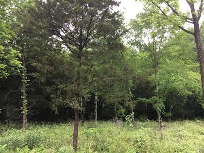 Lots And Land for sale in 0 Wade Herrod Rd, Smyrna, TN, 37167