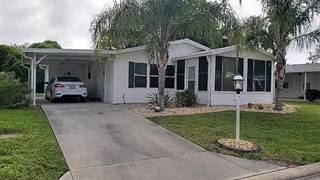 Residential Property for sale in 100 Habersham Drive, Flagler Beach, FL, 32136