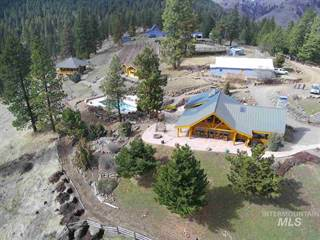 Single Family for sale in 209 Big Canyon Rd, White Bird, ID, 83554