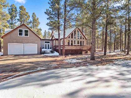 Residential Property for sale in 46 Susan Lane, Angel Fire, NM, 87710