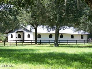 Farm And Agriculture for sale in 4950 SE 212th Court, Morriston, FL, 32668