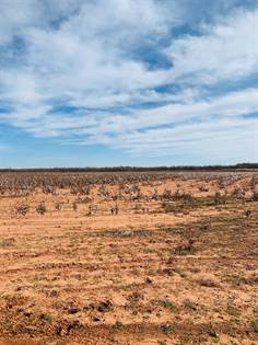 Farm And Agriculture for sale in 2600 Farm Road 643, Spur, TX, 79370