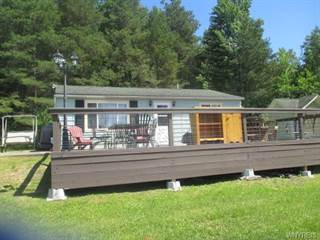 Single Family for sale in 9982 Skyline Drive, Lime Lake, NY, 14042